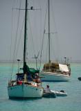 Opus at anchor