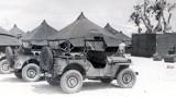 VMF311-Roi-Jeeps.jpg