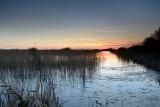 Shapwick Heath  13_d800_0440