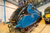 Mallard, National Railway Museum  13_d800_2706