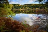 Autumnal Fewston  13_d800_4175