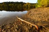 Swinsty Reservoir  13_d800_4324
