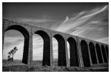Ribblehead Viaduct  15_d800_5447