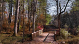 The Perry Rudnick Nature Trail