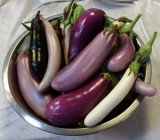 Bowl of Eggplant