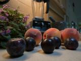 P1060677 13 oz peaches