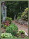 P5290026 Garden Path