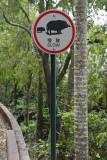 Warning Signal (Wild Boar)