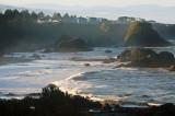 04-Harris-Beach-127.jpg