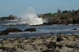 04-Harris-Beach-154.jpg