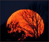 Rising Super Moon 2016