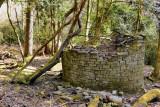 Ruin in the woods.