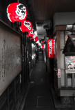 JAPAN27.jpg