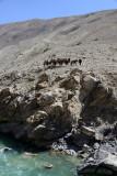Pamir River
