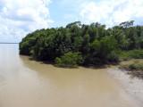 Suriname Nov15 0711.jpg