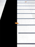 Pianofoglie