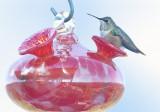 New Nesting Arrangement