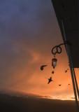 Sunrise RushHour 24 Sept 2013