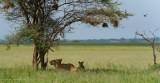 Africa-078.jpg