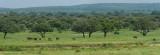 Africa-145.jpg