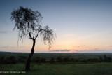 Africa-151.jpg