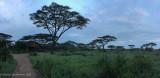 Africa-186.jpg