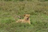 Africa-205.jpg