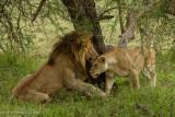 Africa-237.jpg