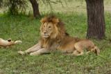 Africa-251.jpg