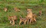 Africa-299.jpg