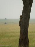 Africa-458.jpg
