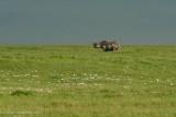 Africa-527.jpg