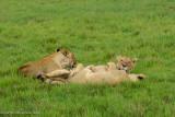 Africa-589.jpg