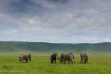 Africa-656.jpg