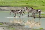 Africa-661.jpg