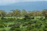 Africa-673.jpg
