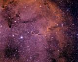 IC 1396 - la Trompe d'éléphant