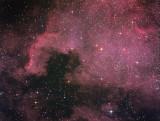 NGC 7000, la Nébuleuse America