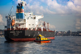Unique Fidelity container ship with pilot boat on Sydney Harbour