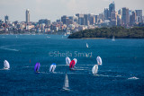 Sydney Harbour yacht race with spinnakers