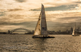 Yachts on Sydney Harbour with Bridge backdrop