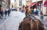 Horse carriage in Brugge