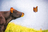 Cow profile with butterfly