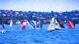 Skiff race on Sydney Harbour