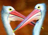 Duelling pelicans