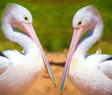 Animal impressionist images