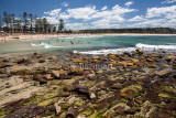 Dee Why rocks