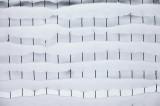 snow on the garden fence