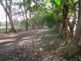 Driveway to benab