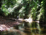 One of the many bends in the river